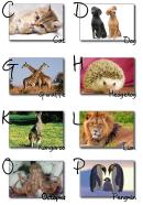 alphabetChart2