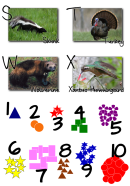 alphabetChart4